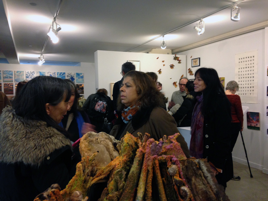 23. Insecta opening