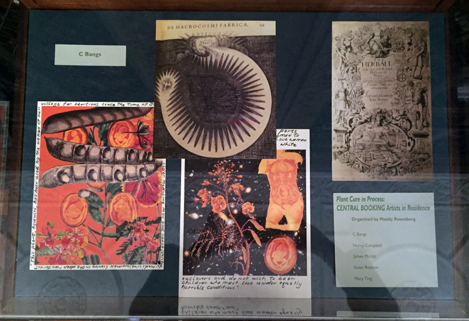 07.NYAM Rare Book Room_C Bangs2_web