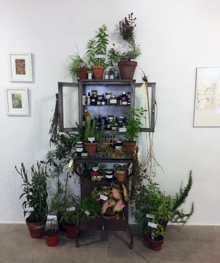 27.Plant Cure web