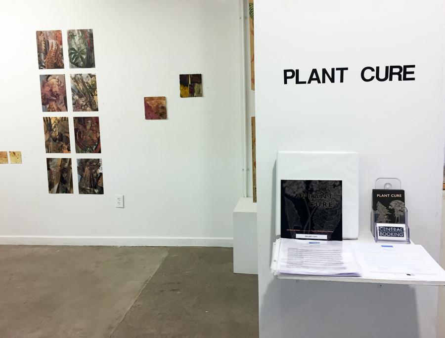 01.Plant Cure web