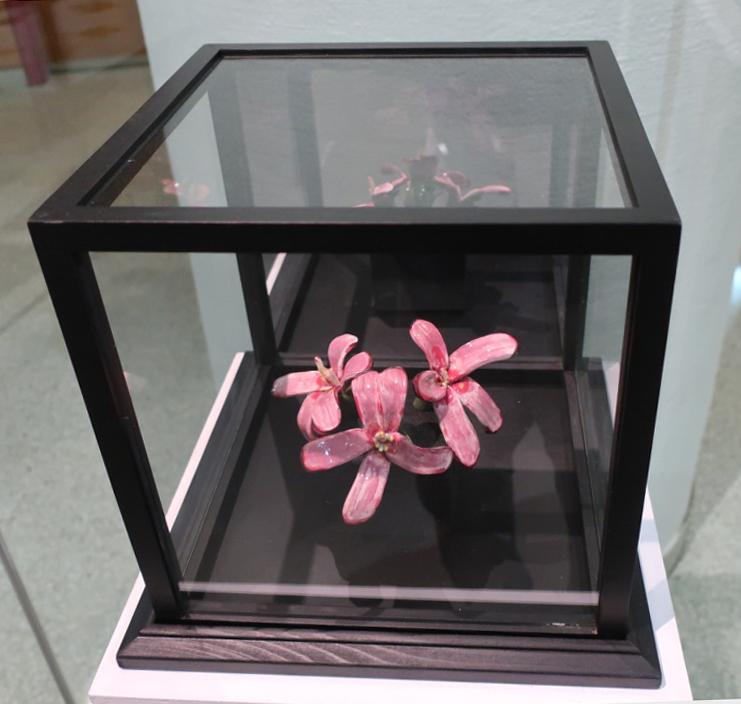 LIU Agnes model1