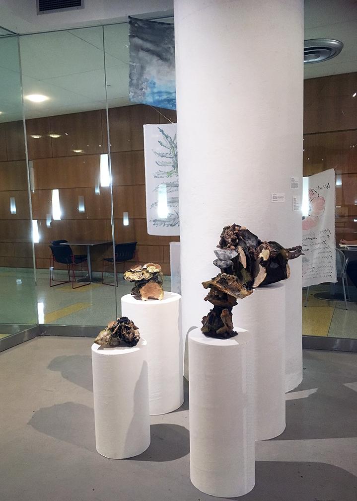 exhib_Susan front