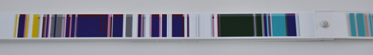 3. Chromosome Painting Book Ondrizek