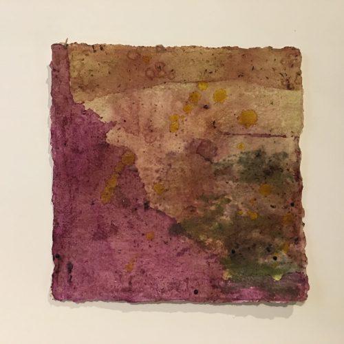 TessaGrundon-Pokeweed-2017-Pokeweed-foxglove-hydrangea-tumeric-dandelion-marigoldonhandmadepaper-8.5x8.5inches-$700